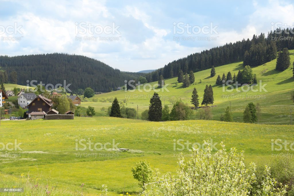 Pasture in Swiss Alps stock photo