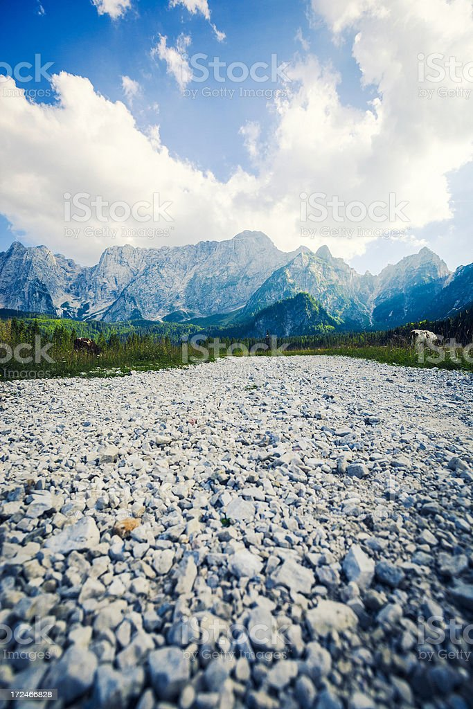 Pasture in The Alps royalty-free stock photo