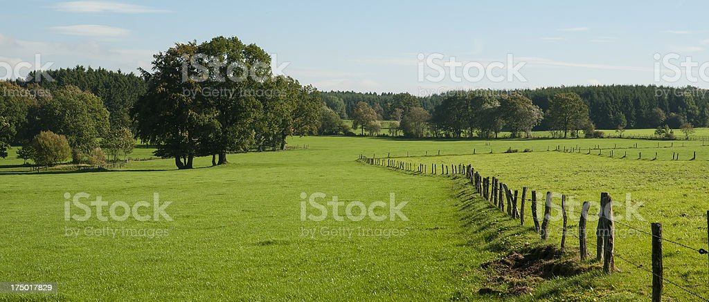 Pâturage du paysage près de Stavelot, Belgique - Photo