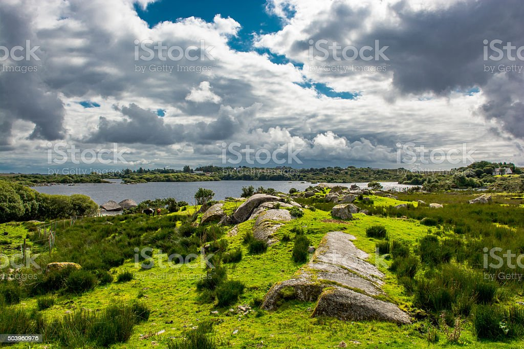 Pasture near Lake in Connemara in Ireland stock photo