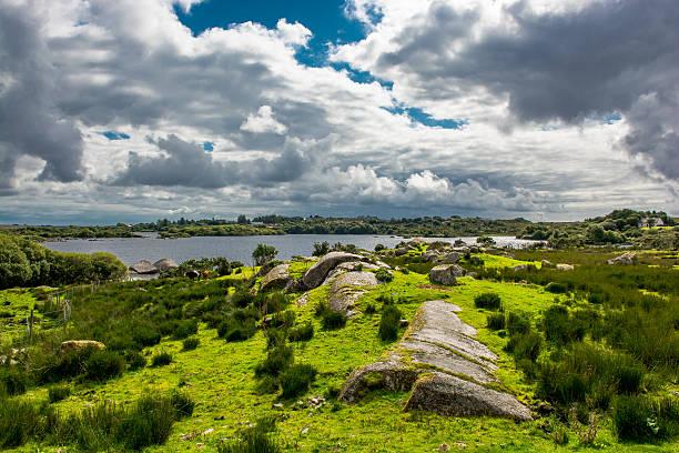 Pasture near Lake in Connemara in Ireland stock photo