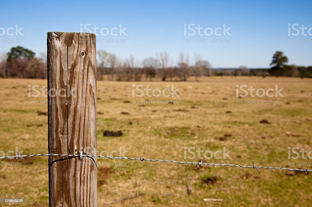 Pasture with barbed wire fence in foreground. stock photo
