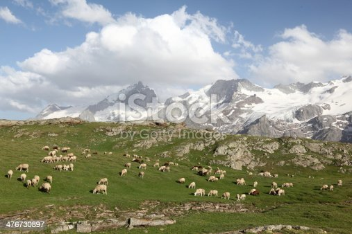 Pastureland in the French alps