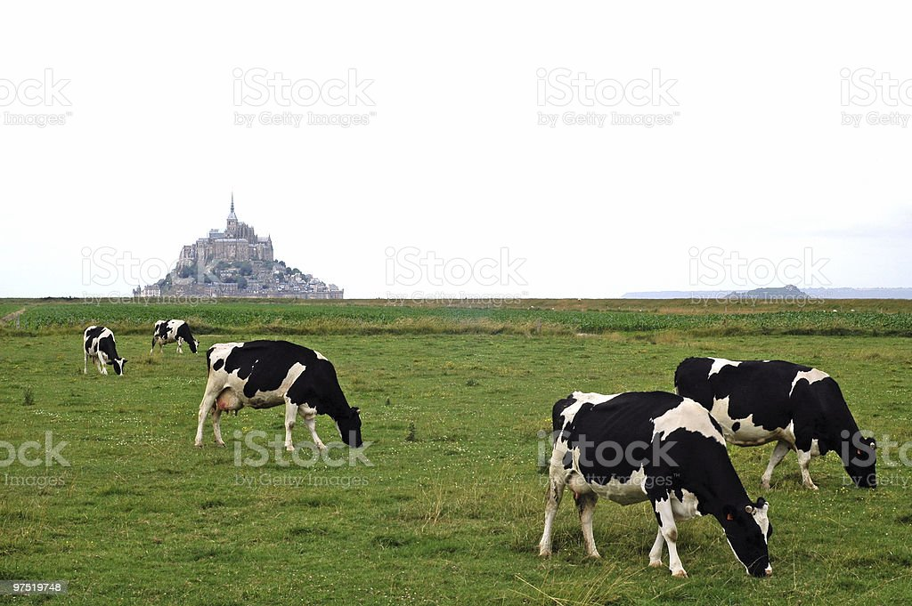 Pastures near Mont-St-Michel royalty-free stock photo