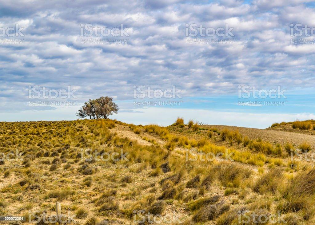 Patagonia Landscape Santa Cruz, Argentina02 stock photo