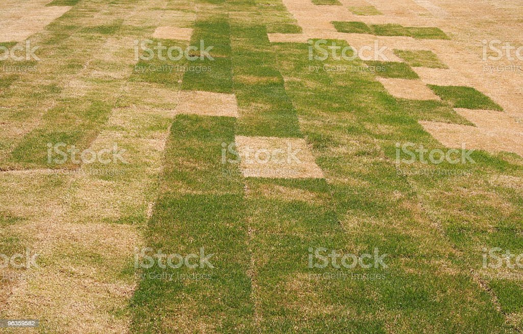 patchwork sod stock photo