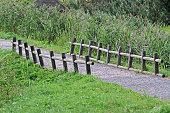 istock A path and a small old wooden fence in the village 998443982