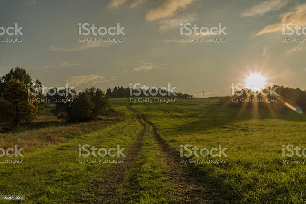 Path and field in evening in Slavkovsky les national park stock photo
