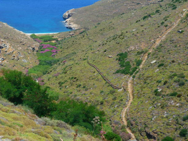 Path, Andros island, Cyclades, Grece stock photo