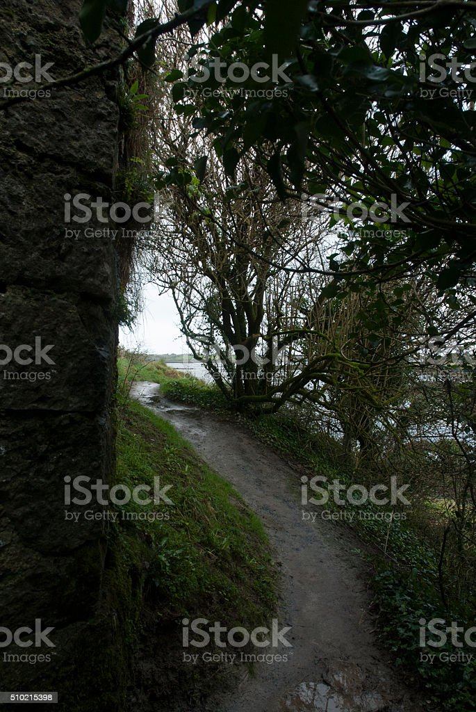Path around Dunguaire's Castle stock photo