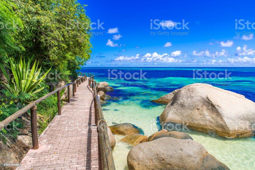 Path at paradise coast stock photo