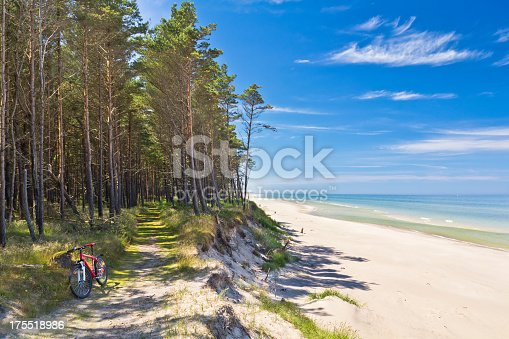 Summer scene with path in the forest at the seashore, Łeba,  Baltic Sea, Poland