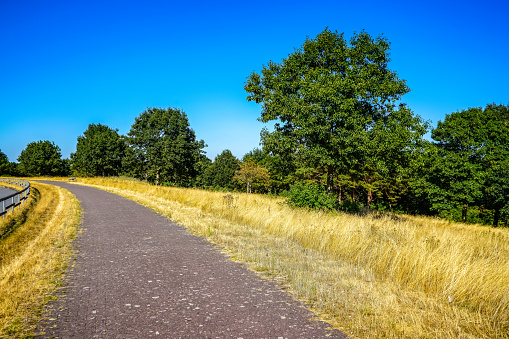A path by a dry field.