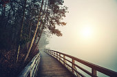 istock Path By The Lake 517150337