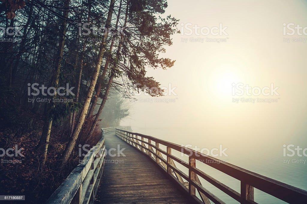 Chemin du Lac - Photo
