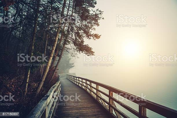 Photo of Path By The Lake