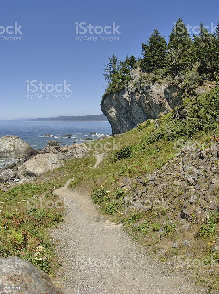 Path by the Pacific royalty-free stock photo