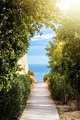 A path covered with wooden panels between the trees and bushes with a view to beautiful blue water of Mediterranean sea and a ray of a sunlight, Alicante, Spain.