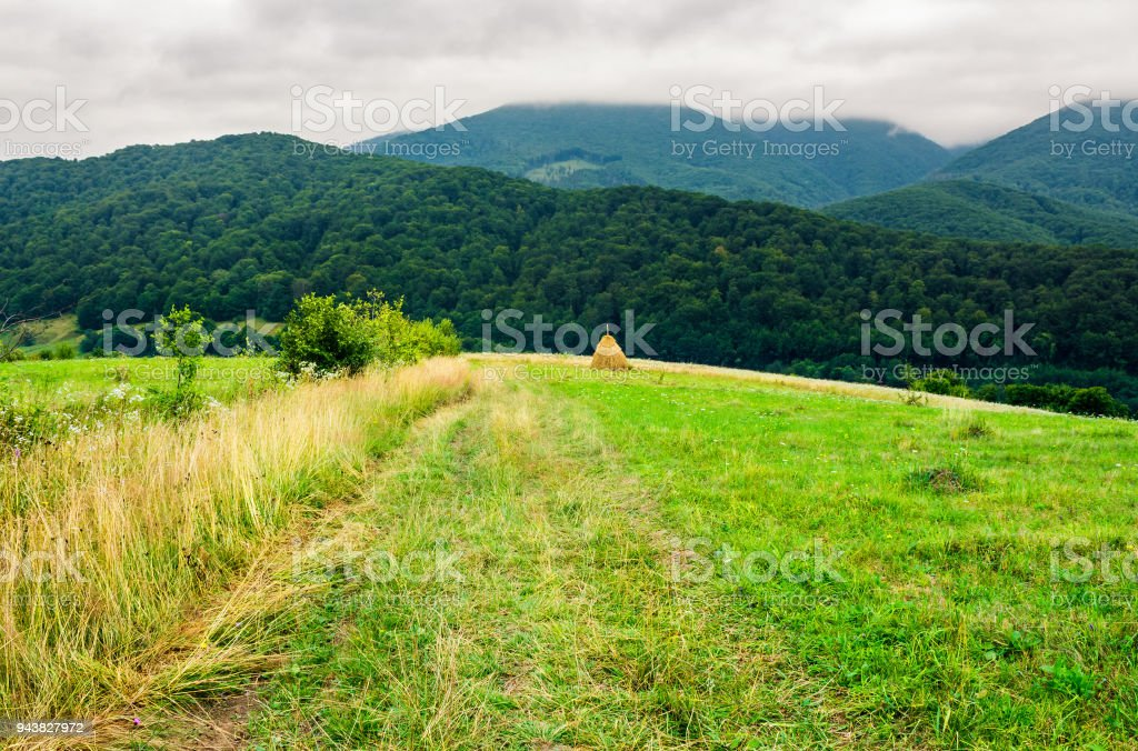 path down the rural field on hillside stock photo