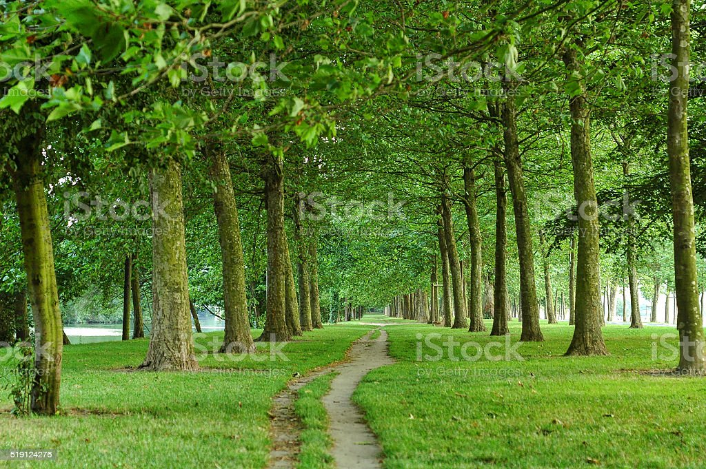 Path in a park of Caen stock photo