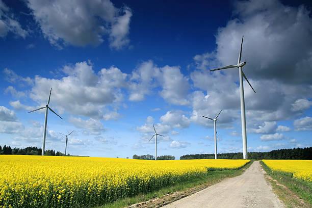 Windmühle farm – Foto