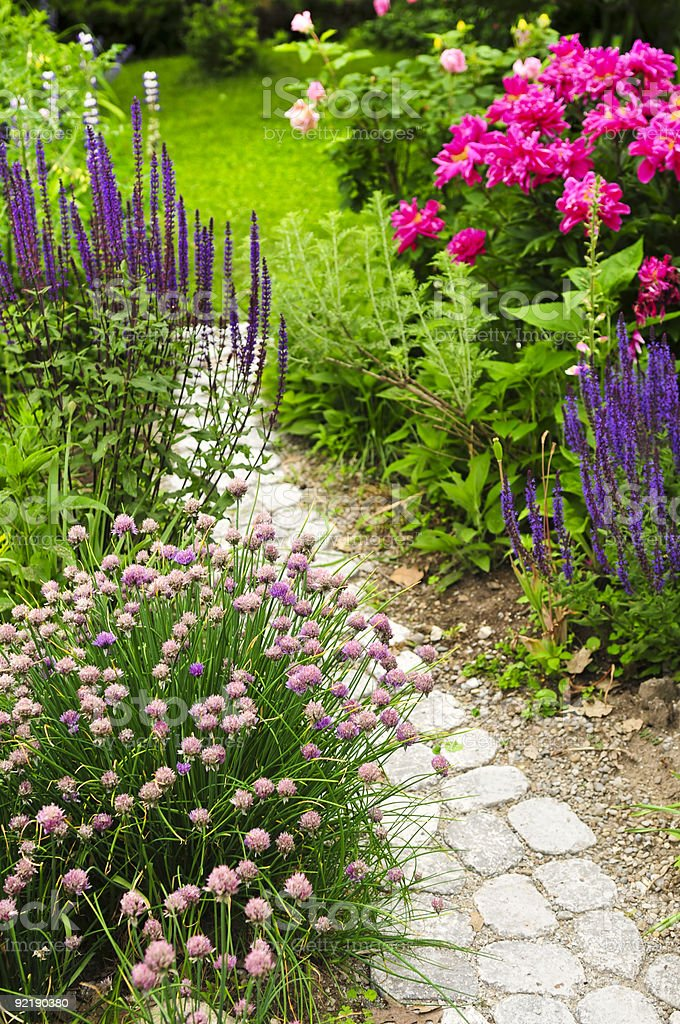 Path in blooming garden royalty-free stock photo