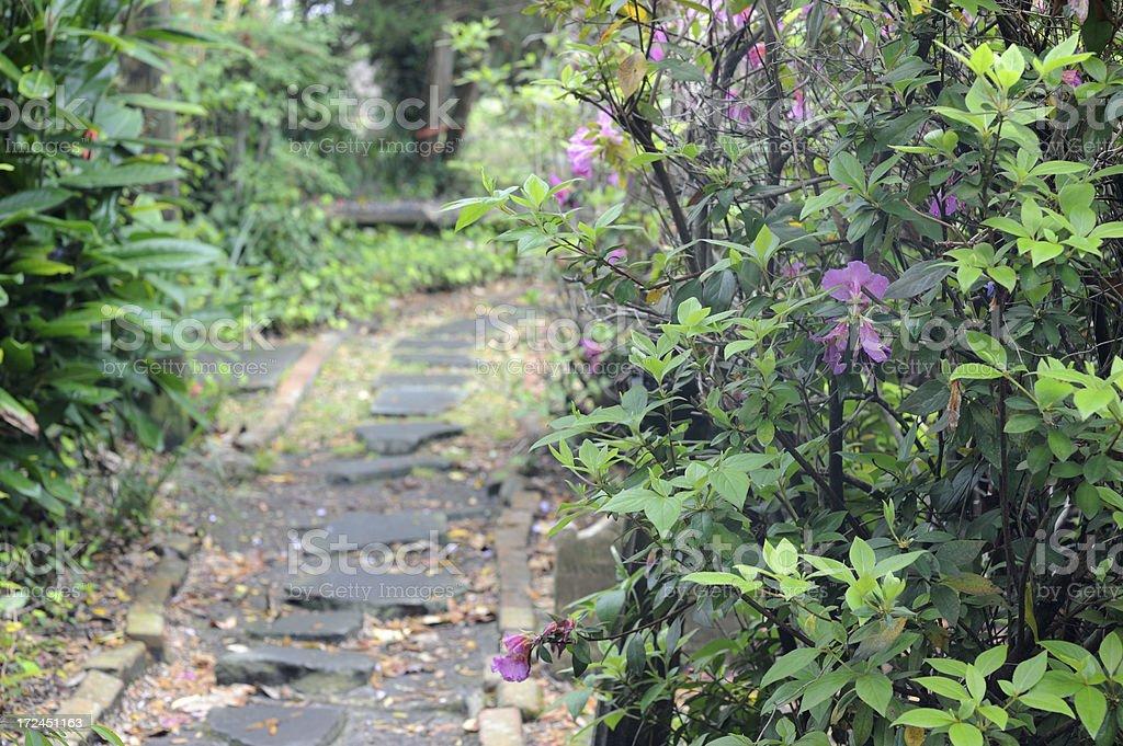 Path in Churchyard royalty-free stock photo