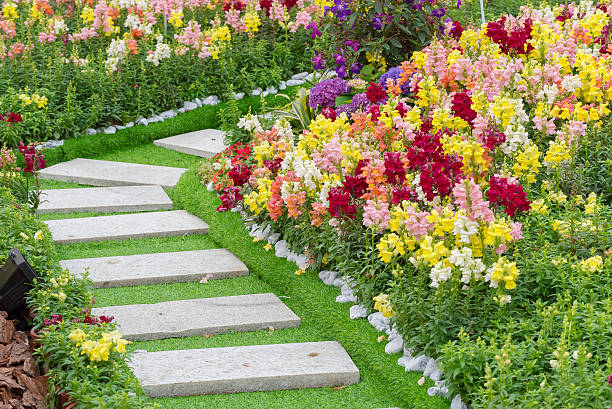 Path in garden Path in Ornate Flower Garden perennial stock pictures, royalty-free photos & images
