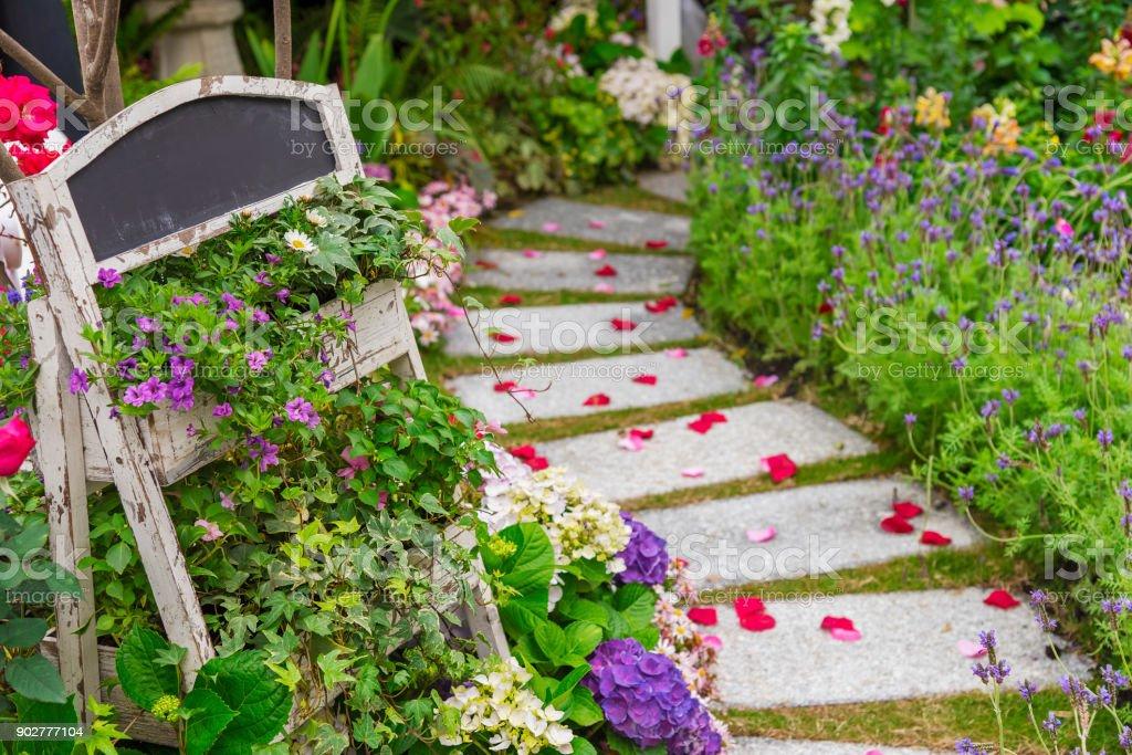 path in garden stock photo