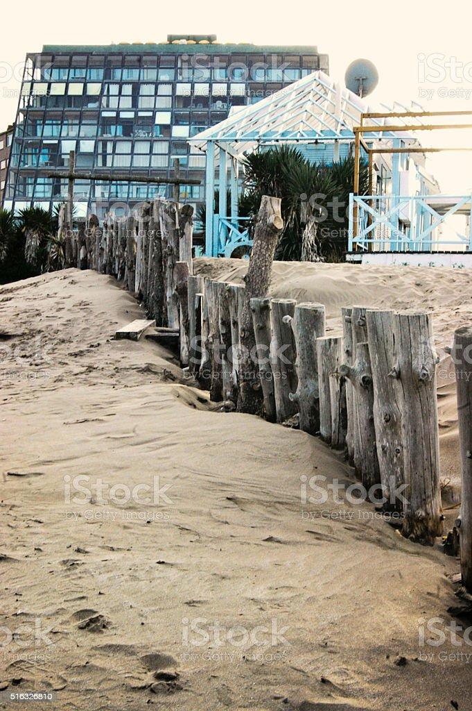 path in the beach stock photo