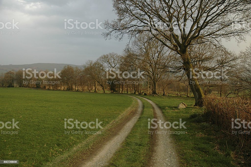 Path in the countryside stock photo
