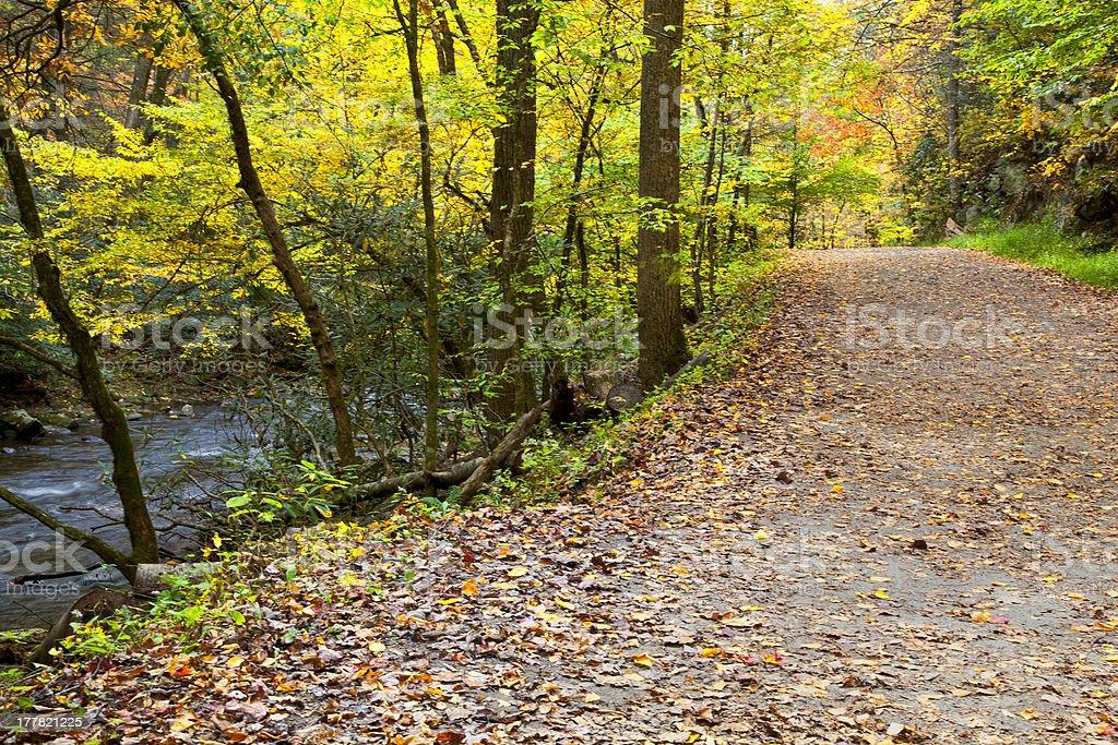 Path in the Fall Season Beside a Creek stock photo