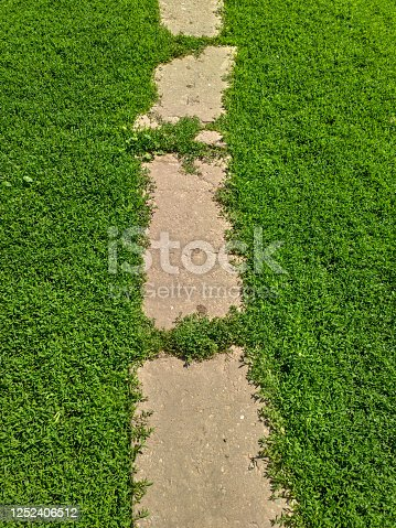 istock path in the grass. background of footpath on the green grass 1252406512