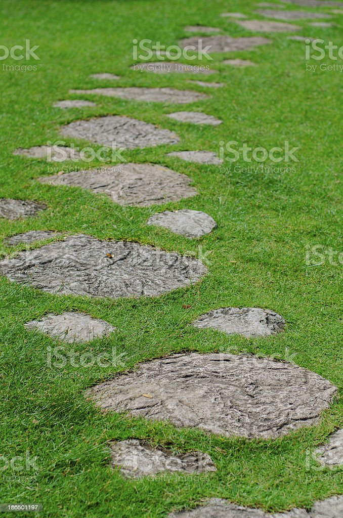 Path in the Grass royalty-free stock photo