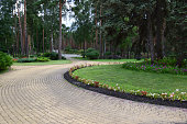 Summer path in the park, lined with paving slabs. Flowers and bushes grow on the sides