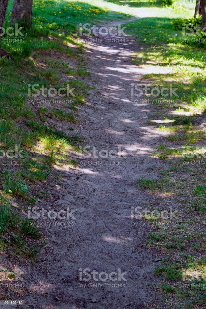 Caminho no parque - Foto de stock de Calor royalty-free