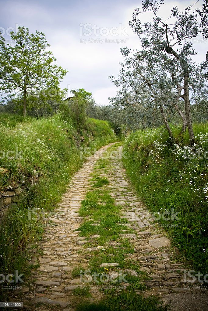 Path in Tuscany royalty-free stock photo