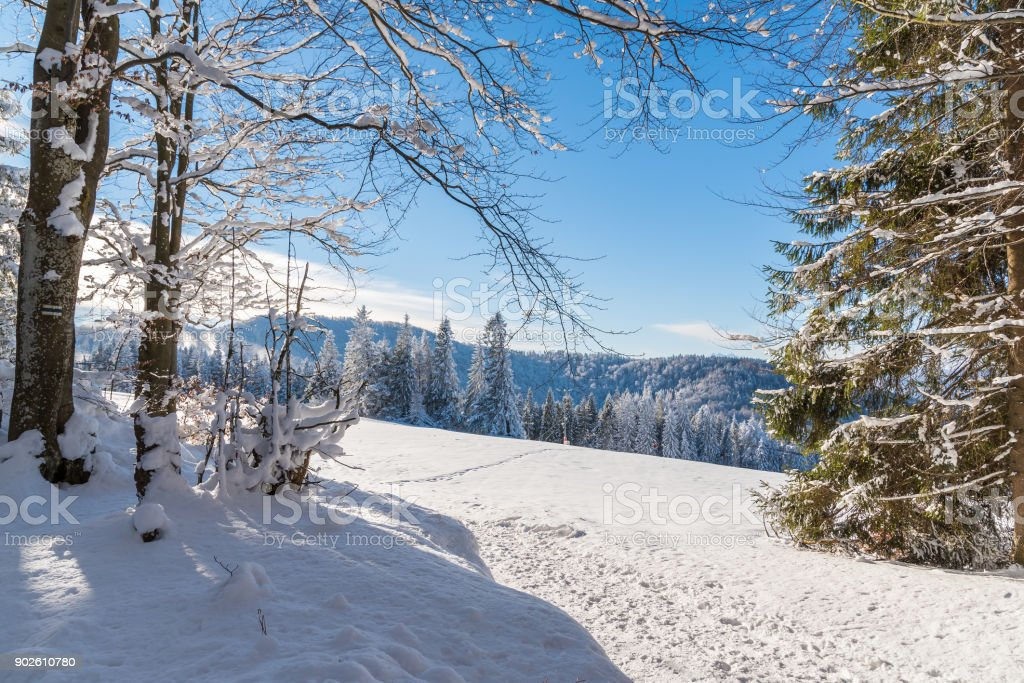 Path in winter landscape of Beskid Sadecki Mountains, Poland stock photo