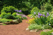 Landscape image of a footpath running through a rock garden with plants in bloom