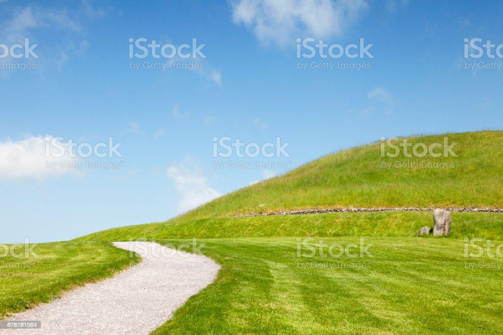 Chemin d'accès menant à travers un espace verdoyant photo libre de droits