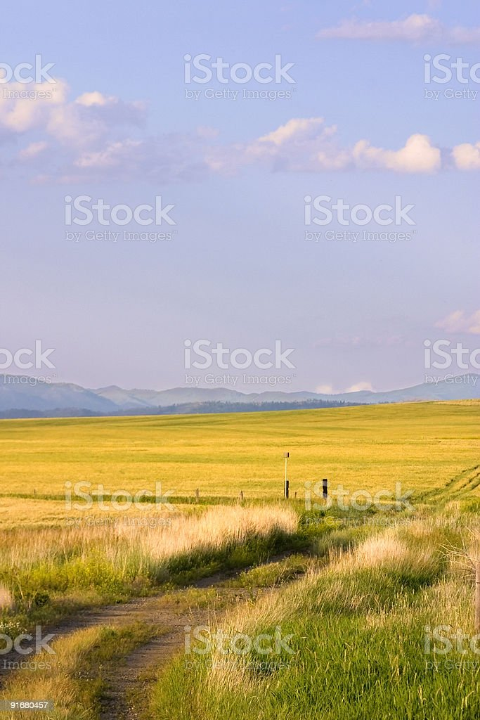 Path Leading to a Field in Montana royalty-free stock photo