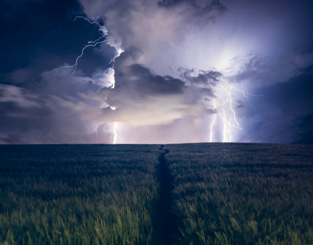 path leading up to a dramatic lightning strike in a field - lightning stock photos and pictures