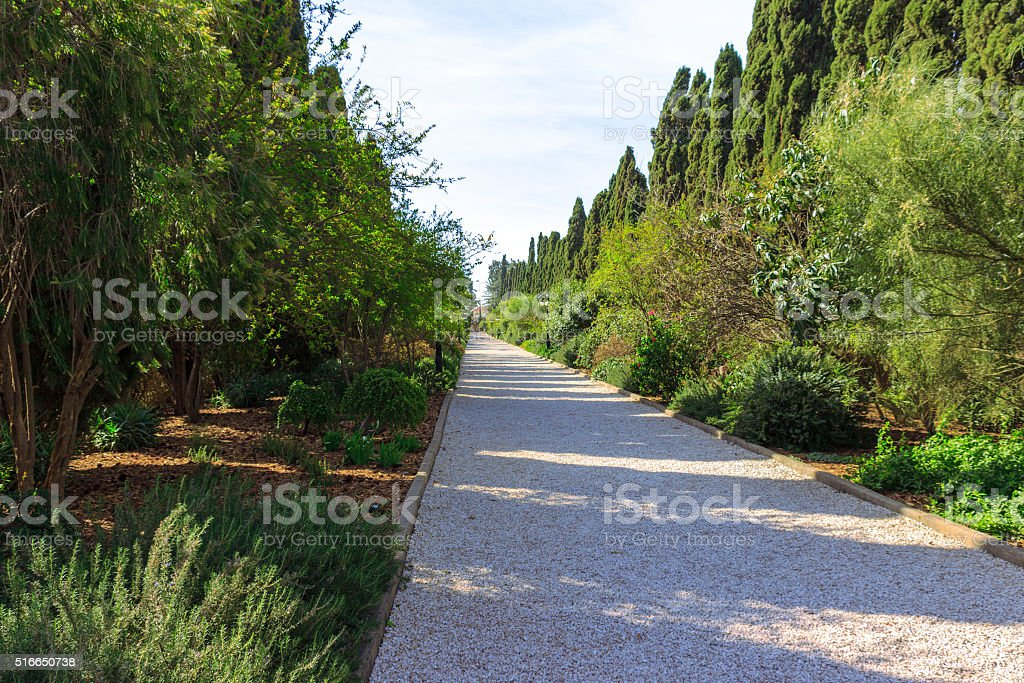 path of crushed stone with trees and shrubs stock photo