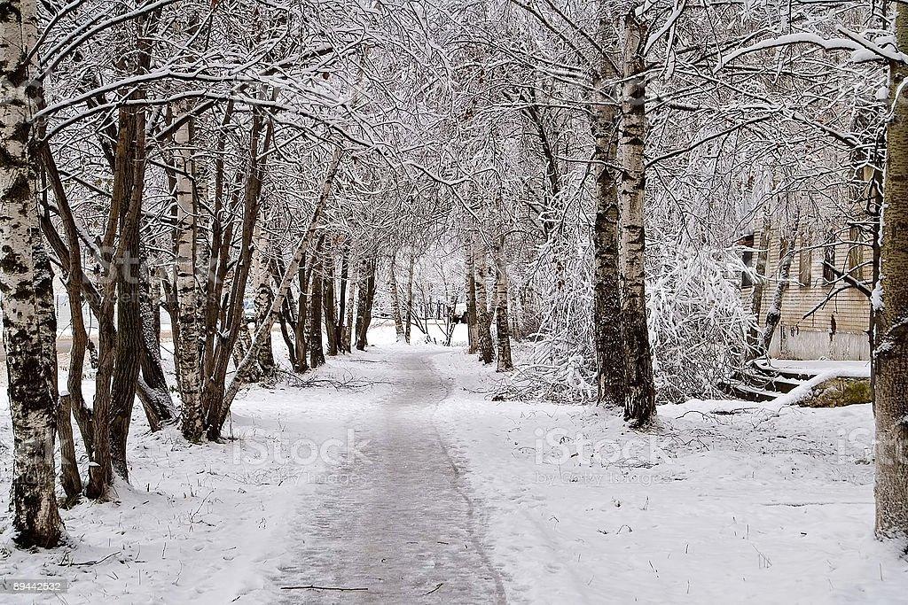 Percorso di sciogliere la neve foto stock royalty-free