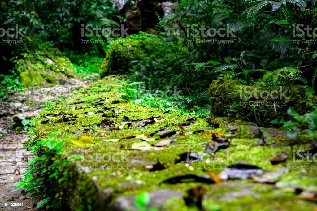 path of stone stock photo
