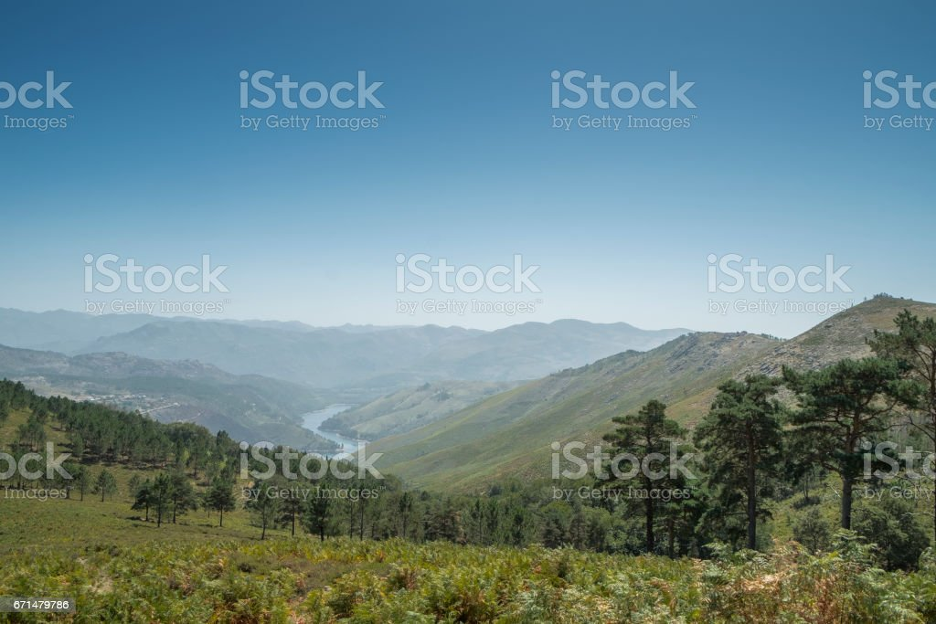Path of the river that crosses the mountains and forest stock photo
