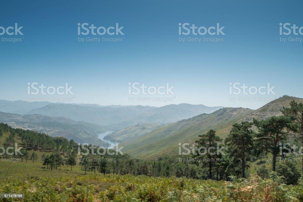 Caminho do rio que atravessa as montanhas e a floresta - foto de acervo