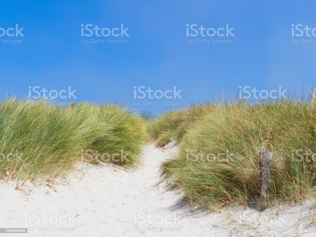 Path off the beach stock photo