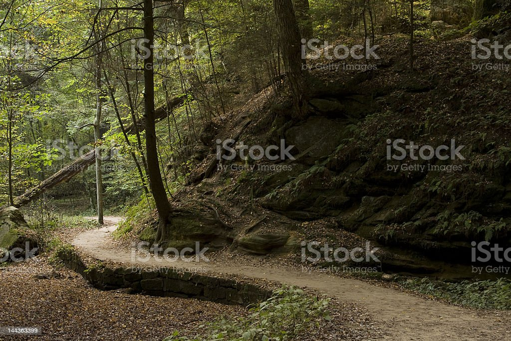 Path on a cool hike trail stock photo