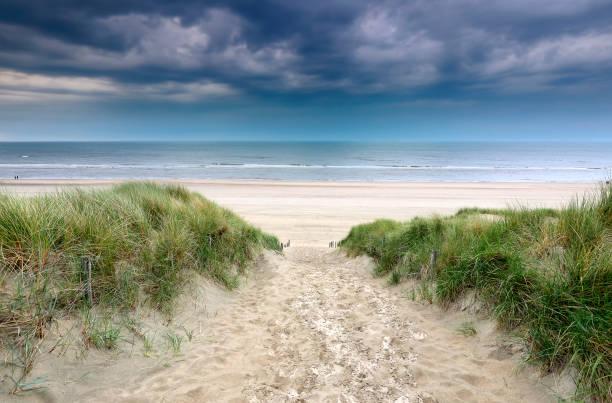 pad op zandduin naar Noordzeestrand, Holland foto